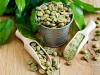 Coffee Bean Extract Market'
