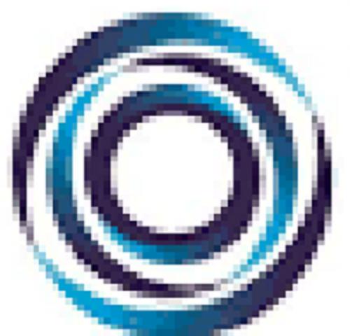 Company Logo For Bornwin'