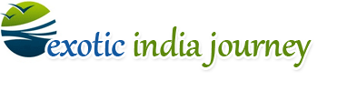 Best Tour Operator In India'