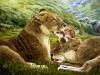 Lion Family Print'