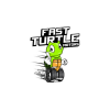 Fast Turtle Motors