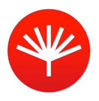 Yordar Logo