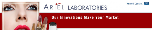 Logo for Ariel Laboratories'