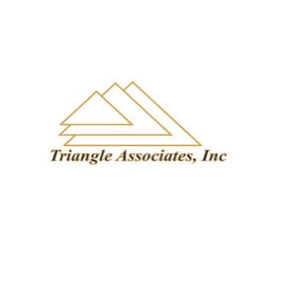 Company Logo For Triangle Associates Inc'