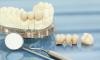 Orthodontist'