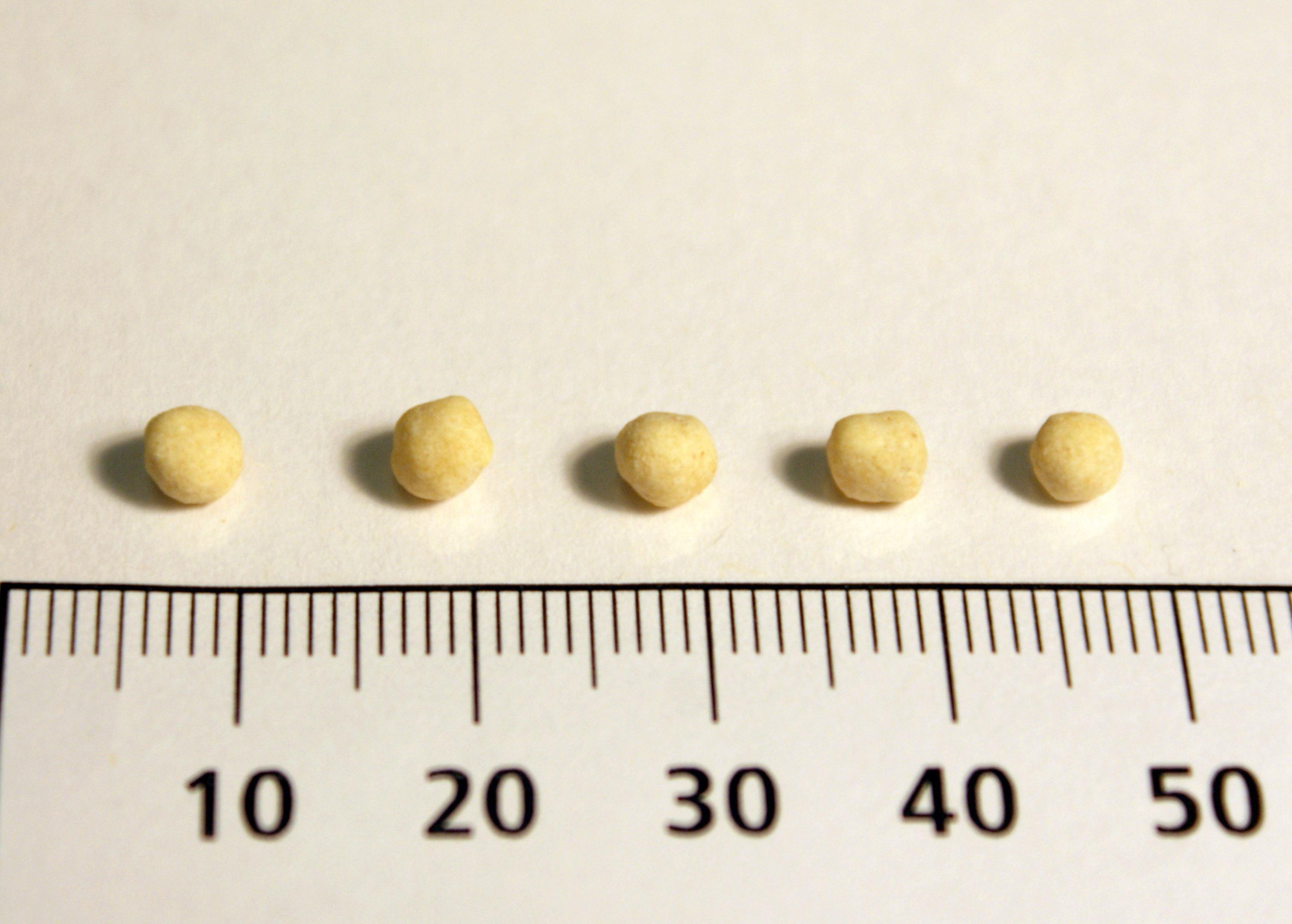 Chickpea seeds from Locus 3, Area A, Ararat.