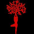 Company Logo For Ciao India Tours'