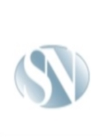Company Logo For Seiden Netzky Law Group, LLC'