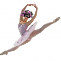 Seiskaya Ballet Logo