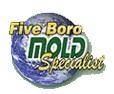 Five Boro Mold Specialist'