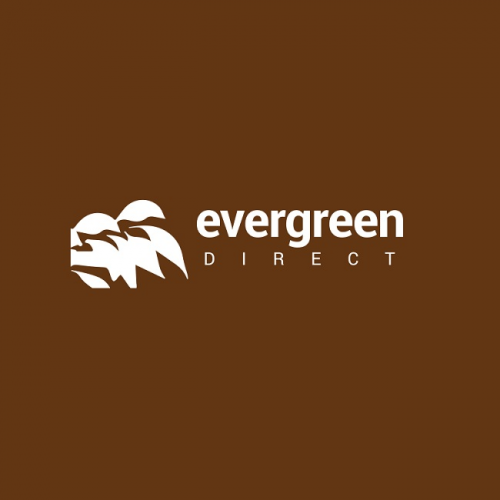 Company Logo For Evergreen Direct'