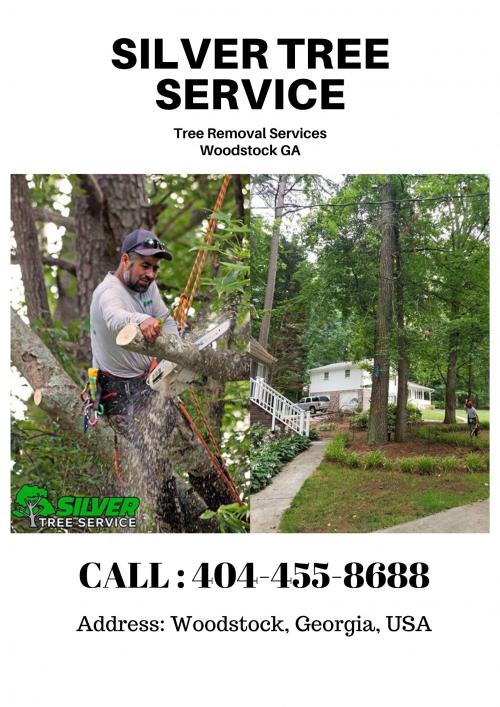 Tree Removal Company Near Me Woodstock GA'