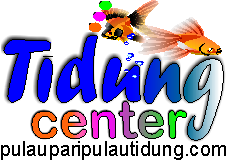 Pulau Tidung Center'