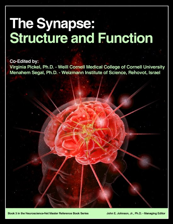 Book 3: The Synapse: Structure and Function