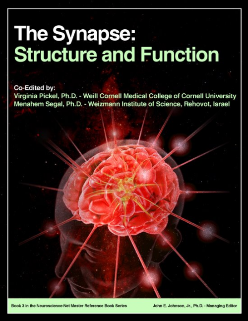 Book 3: The Synapse: Structure and Function'