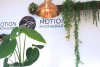 Myotherapy and Remedial Massage Northcote'