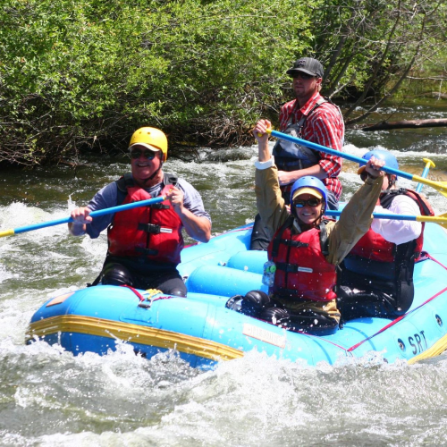 Whitewater Trips'