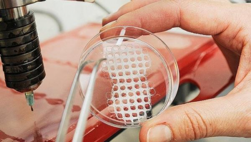 3D Bioprinting Market is Expected to Reach USD 4,306.6 Milli'