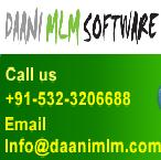 Logo for Daani IT Solution'