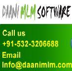 Daani IT Solution Logo