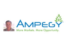 Logo for Ampegy'