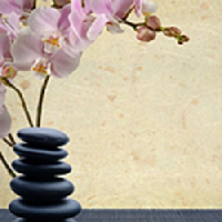 A Therapeutic Massage by Trudie Harris Logo