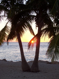 Spring Break in Key West. Photo by kkmacc on Photobucket.