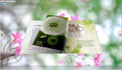 flipping book with 3D style'
