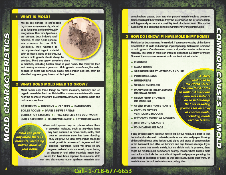 NYC mold inspection brochure1
