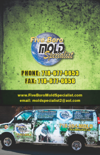 NYC mold inspection brochure9