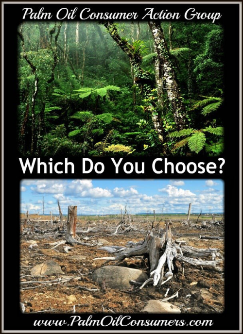 Consumers choice for palm oil'