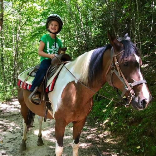 Horseback Riding Tours'