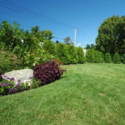 Landscaping Services'