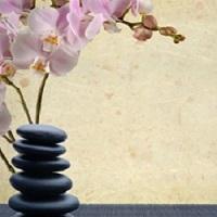 Massage Spa'