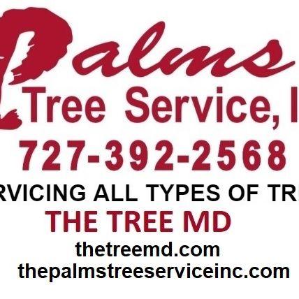 Tree Services'