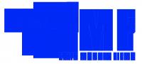 Flyin Monkey Films Logo