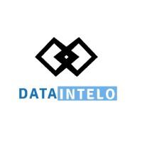 Company Logo For Data Intelo'