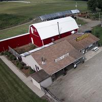 Wooden Nickel Buffalo Farm And Corn Maze Logo