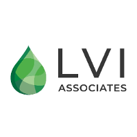 LVI Associates USA Logo