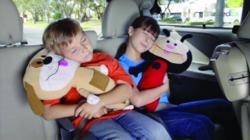 SeatPets children'