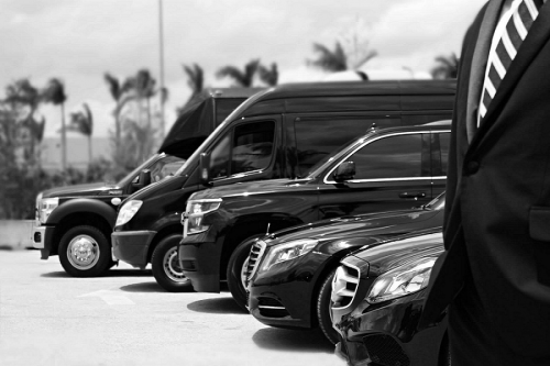 Company Logo For Limousine Services Chicago Indianapolis IN'