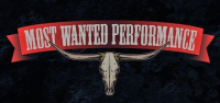Most Wanted Performance Logo