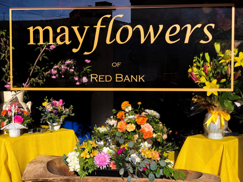 Company Logo For Mayflowers of Red Bank'