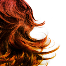 Hair Color'