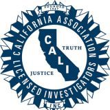 Full Spectrum Investigations and Consulting Logo