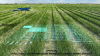 Artificial Intelligence (AI) in Agriculture Market Assessmen'