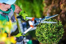 Waste Management & Remediation Services'