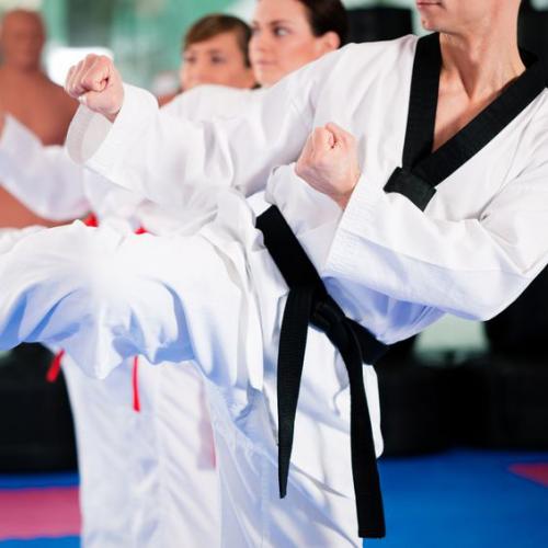 Martial Arts Trainer'