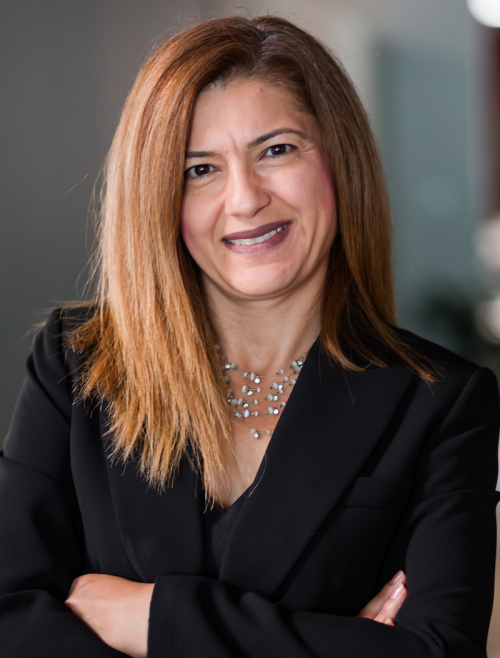 auto fraud attorney pauliana lara'