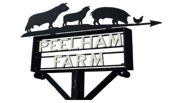 Peelham Farm'
